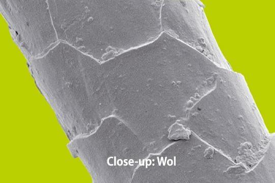 close-up wol